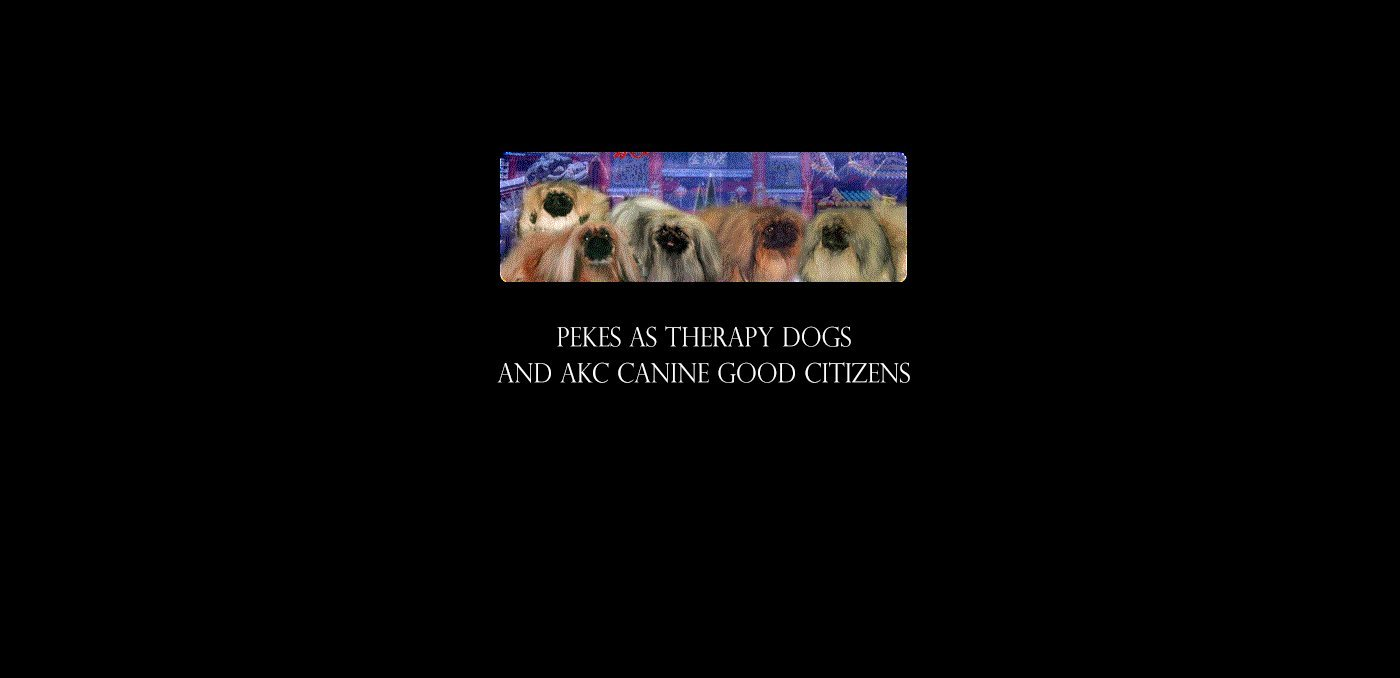 Pekes as Therapy Dogs