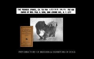 1909 Directory of breeders exhibitors of dogs