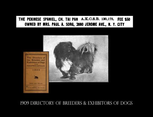 1909 Directory of Breeders & Exhibitors of Dogs in the U.S. & Canada