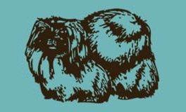 Pekingese Club of Georgia logo