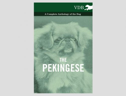Anthology of the Dog – Pekingese